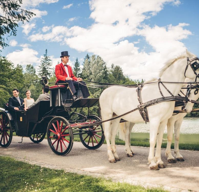 Couple on a horse drawn carriage in Brdo