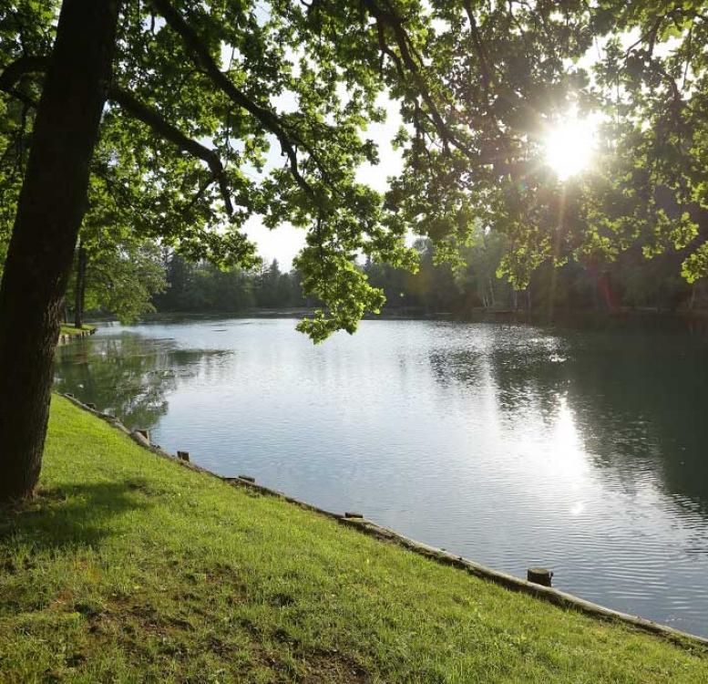 Lake in park Brdo